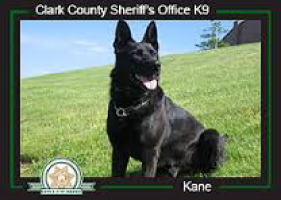 South Snohomish County Honor Guard | K-9 Memorial | kane_k9